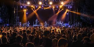 concert pic - Michael Timothy Saulman