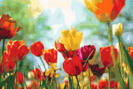 tulip painting - Kimber Lea Bogar